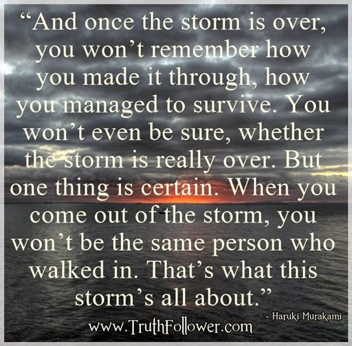 the storm is over Quote